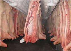 Трейдеры определили вероятные движения цен рынка свинины