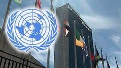 ООН: За время конфликта на Донбассе погибло 6362 человек