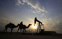 Сможет ли ОПЕК сегодня прийти к решению заморозить добычу нефти?