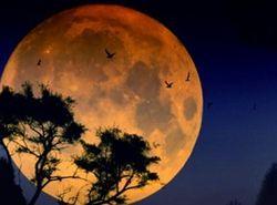 Ученые рассказали, как появилась Луна