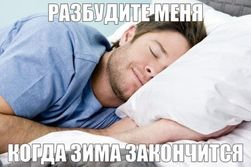Почему люди не могут впасть в зимнюю спячку