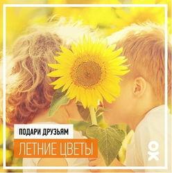 В «Одноклассники» стартовала новая акция «Подарить пожелание»