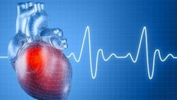 Названы 100 самых популярных в России препаратов для сердца
