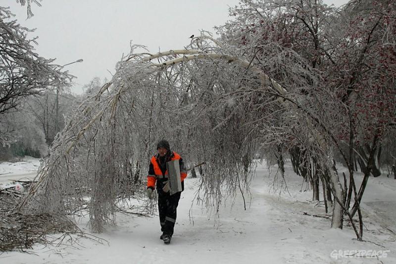 Утром 26 декабря в москве начался