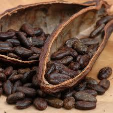 Рынок какао: производство в Нигерии вырастет на 20 процентов