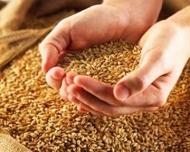 В Казахстане сезонное повышение цен на муку - зерновые фьючерсы бьют рекорды