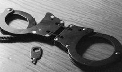 Беглого экс-нардепа Шепелева задержали в Венгрии благодаря прослушке