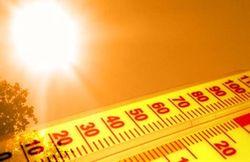 Нынешнее лето в Украине будет самым жарким за десятилетие