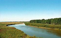 В Украине не осталось чистых рек – эксперты