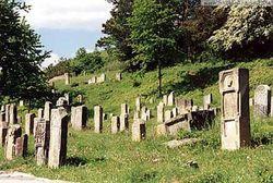 Призом победителю матча между священниками и депутатами стало... кладбище