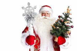 Дед Мороз и новогодняя елка – персоны нон грата в Узбекистане