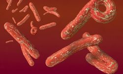 Военные врачи США научились лечить смертельную лихорадку Эбола