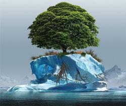 Китай всерьез озаботился глобальным потеплением климата