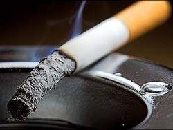 Курильщиков выгоняют из Госдумы в специальный павильон