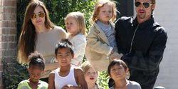 Соседи недовольны поведением семейства Брэда Питта и Анджелины Джоли