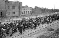Парламент Болгарии единогласно извинился за Холокост