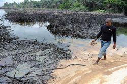 Из дела о загрязнении дельты Нигера Shell вышла чистой