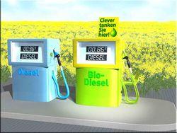 Из-за роста цен на питание ООН просит США заморозить выпуск биотоплива