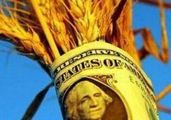 С понедельника пшеничные котировки вновь идут вверх