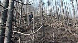 В Туве был задушен и закопан в лесу лучший спортсмен столетия