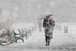 На Львовщине снова начался сильный снегопад. Трасса Киев-ЧОП встала
