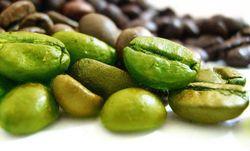 Целебные свойства зеленого кофе – похудение, и не только