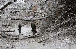 Мнения в социальных сетях гостей Киева о ситуации с непогодой