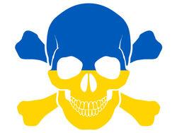 США начали расследование по делу признания Украины пиратской страной