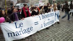 Сотни тысяч французов в Париже протестуют против однополых браков