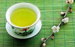 Медики указали на вредные свойства зеленого чая – выводы