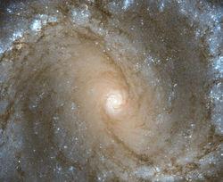 Хаббл зафиксировал галактику с шестью сверхновыми звездами