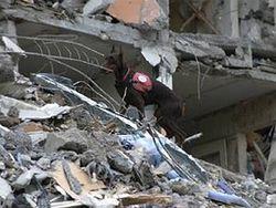 Из-за обрушения дома в Луцке погибли мужчины, когда смотрели футбол