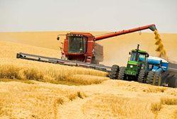 Один процент до финишной черты по сбору урожая остался в Казахстане