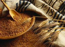 В России фиксируется спад роста стоимости зерна