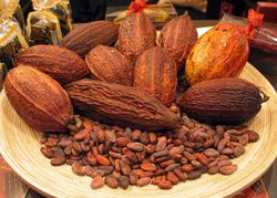 Рынок какао может продолжить нисходящий тренд
