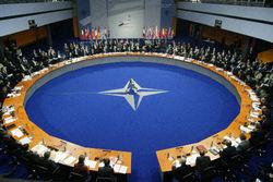 НАТО не будет вмешиваться в военный конфликт Сирии