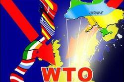 Япония считает, что Украина нарушает нормы ВТО