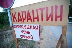 РФ ужесточила досмотр украинских грузов из-за вспышек АЧС