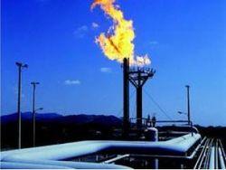 Добыча украинской нефти сократилась, а газового конденсата – наоборот