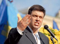 Тягнибок об отсутствии Кличко и синхронности оппозиции в Украине - эксперты
