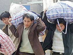В Узбекистане изменены законы по миграции и экономическим преступлениям