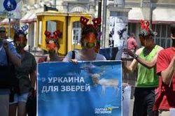 """Акция """"Олени за русский язык"""""""