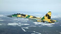 Боевая авиация России вновь станет разноцветной