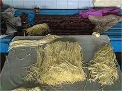 В Украине иностранцы делали сыр из молока больных коров