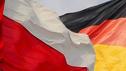 Польша и Германия не против отмены визового режима с Россией