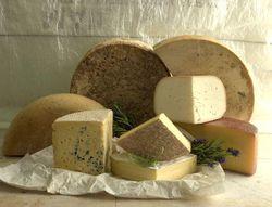 Цена на сыр в мире растет быстрее, чем нефть на бирже