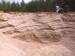 На песчаном карьере в Гомельской области погибли брат и сестра