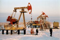 518 тонн достигнет добыча нефти в РФ в текущем году