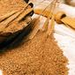 Стоимость пшеницы и сои на мировых рынках снизилась