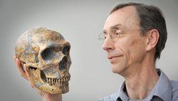 Неандертальцы могли разговаривать современным языком - выводы ученых